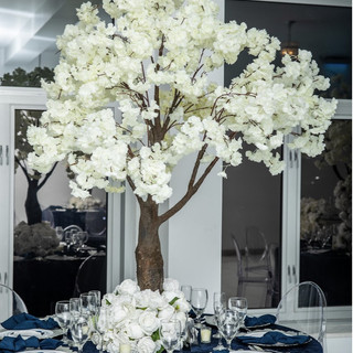 White Blossom Tree 6ft Tall $350