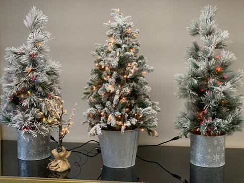 CHRISTMAS TREE 4 FEET 4.jpg