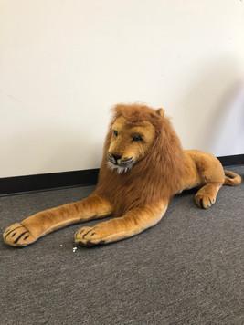 Stuffed Animal Lion