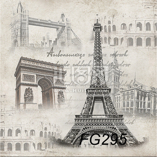 Vinyl Backdrop Paris