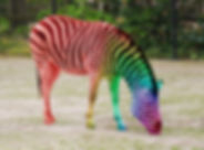 Horse of a different color.jpeg