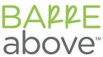 Barre Above Logo.png