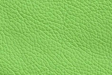 Leder hellgrün, verschiedene Größen (144€/qm)