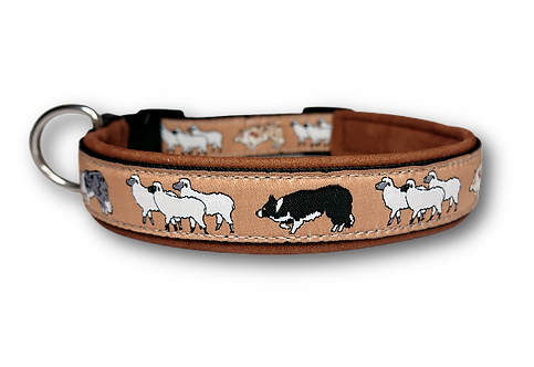 """Halsband """"Border Collie hütet Schafe"""" mit Lederpolsterung"""