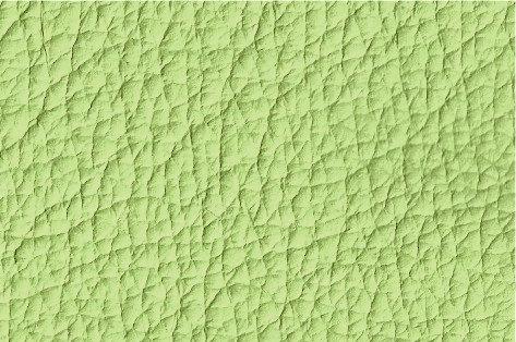 Leder lindgrün, verschiedene Größen (144€/qm)