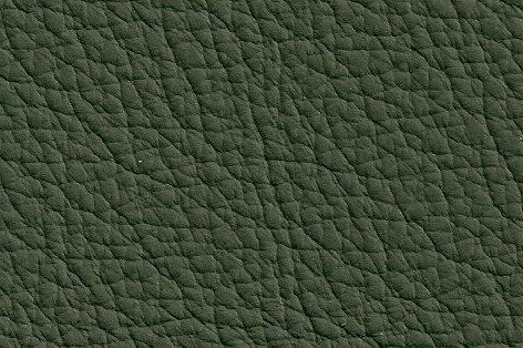 Leder dunkelgrün, verschiedene Größen (144€/qm)