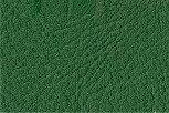 Leder grün, verschiedene Größen (144€/qm)