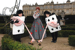 Queen of Hearts Cards and flamingo's Longleat Apr 2012 2 (2).jpg
