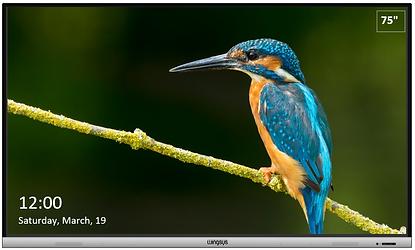 LCD haridus ekraanid ja kooli ekraanid - OÜ Novaver