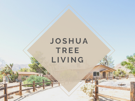 Joshua Tree Living