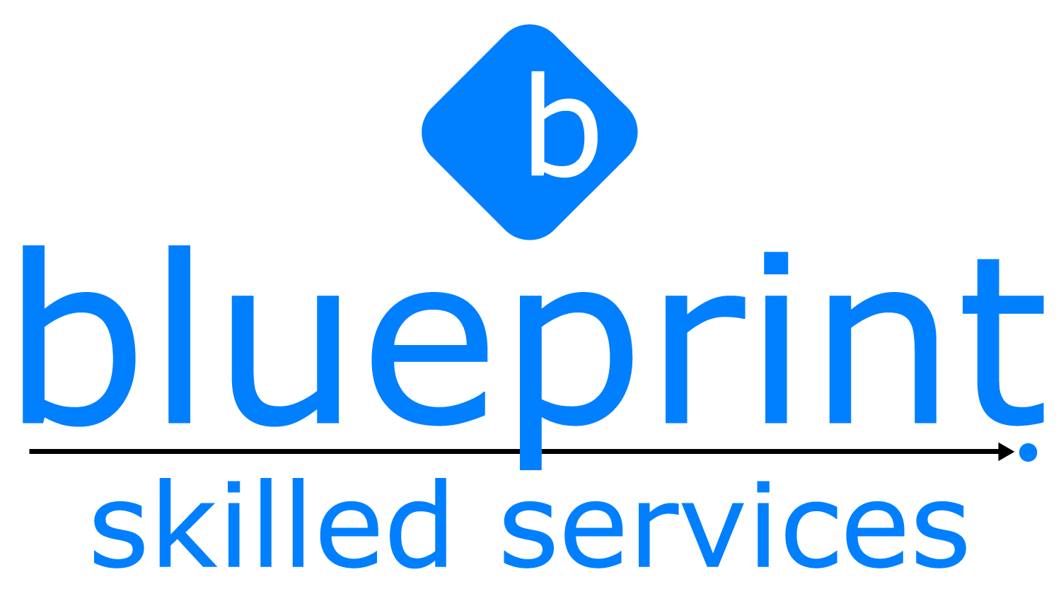 Blueprint Skilled Services