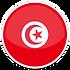 flag Tunisia-icon (1).png