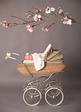 Baby_Kinderwagen_CMilutinov.jpg