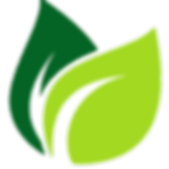cropped-cropped-leaf-vector.png