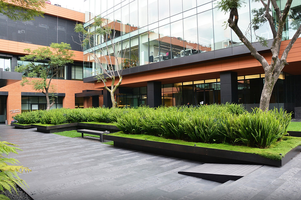 dlc_coyoacan_corporate_campus_31_112614.