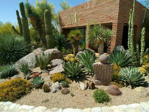 Tipos de Jardim - Jardim Desértico