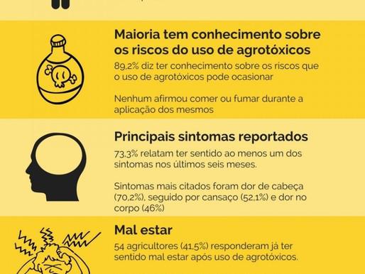 Agricultores não associam uso inadequado de agrotóxicos ao seu estado de saúde.