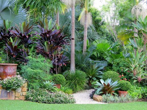 Tipos de Jardim - Jardim Tropical