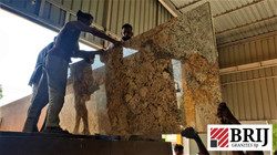 Alaska Gold Granite Slab Loading Brij Gr