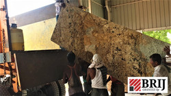 Indian Granite Exporter Alaska Gold Slab