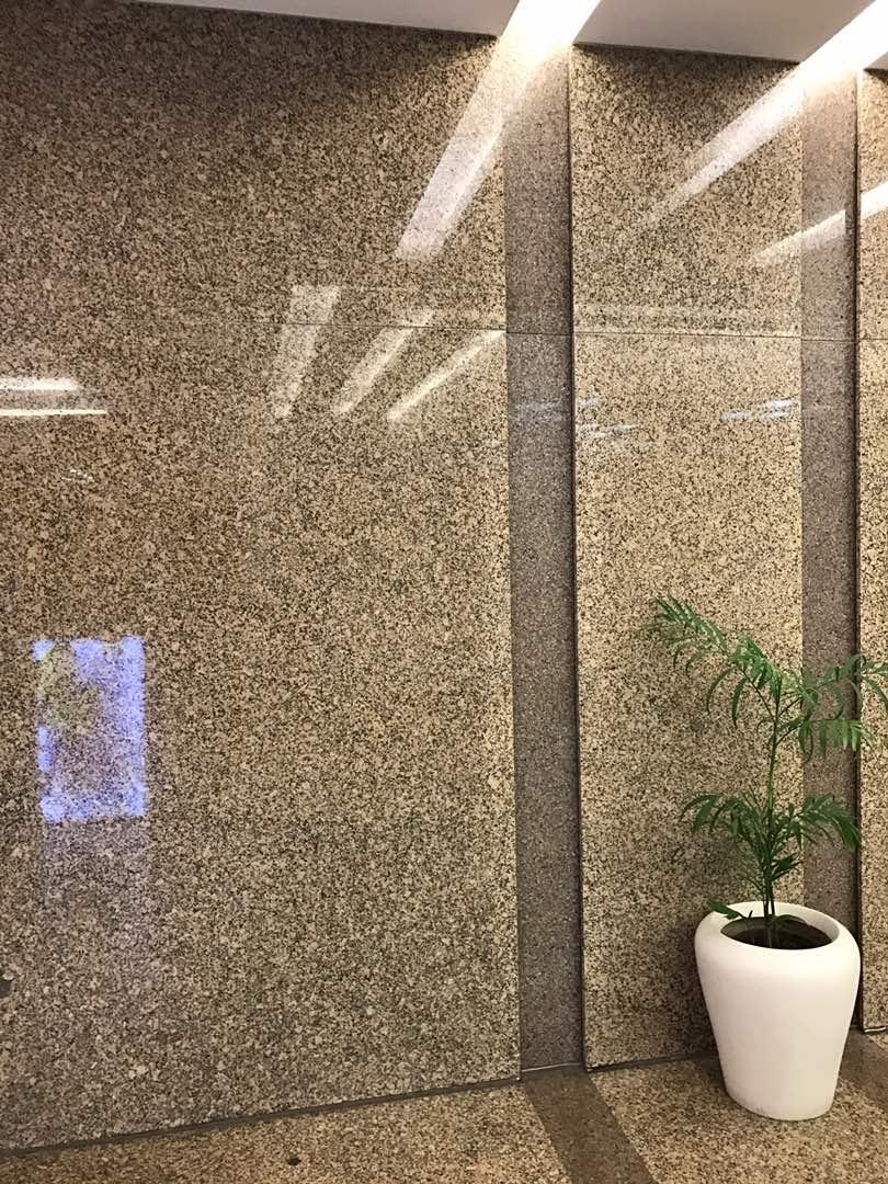 zed brown granite in hotel lobby elevator area