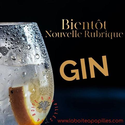 banniere-nouvelle-rubrique-gin.jpg