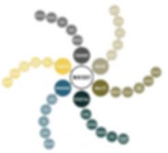 roue-des-aromes-du-whisky-1000-915-75-47