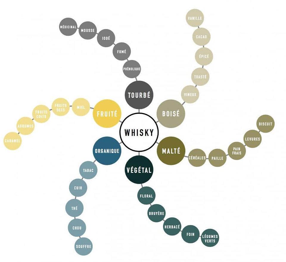 Roue des arômes whisky