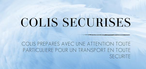 banniere-information-colis.png