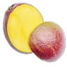Fruit mangue