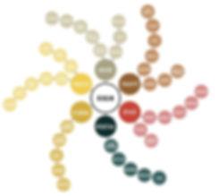 roue-des-aromes-du-rhum-1000-897-75-4744