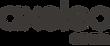 Axeleo Capital logo_officiel2_edited.png