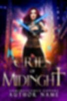 New assassin with a dagger - book 2.jpg