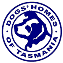 dogs_homes