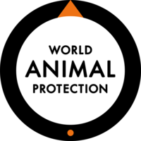 Charity of the Week - World Animal Protection