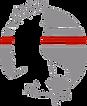 Talon logo- eagle only- transparent back