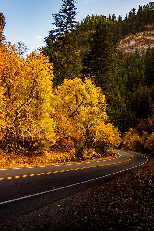 "12' X 18"" Fall in Provo Canyon, UT"