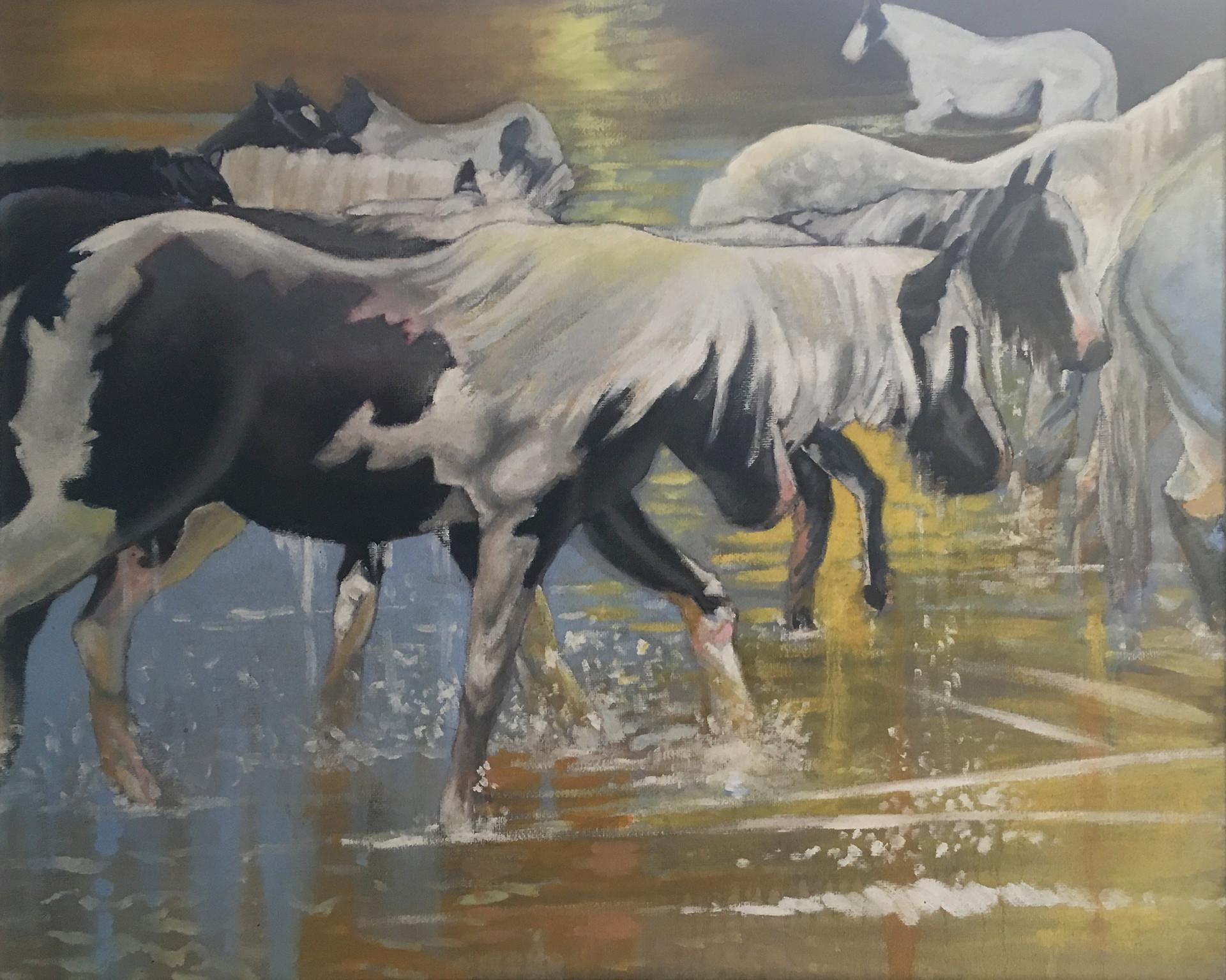 Wild Horses 04.jpg