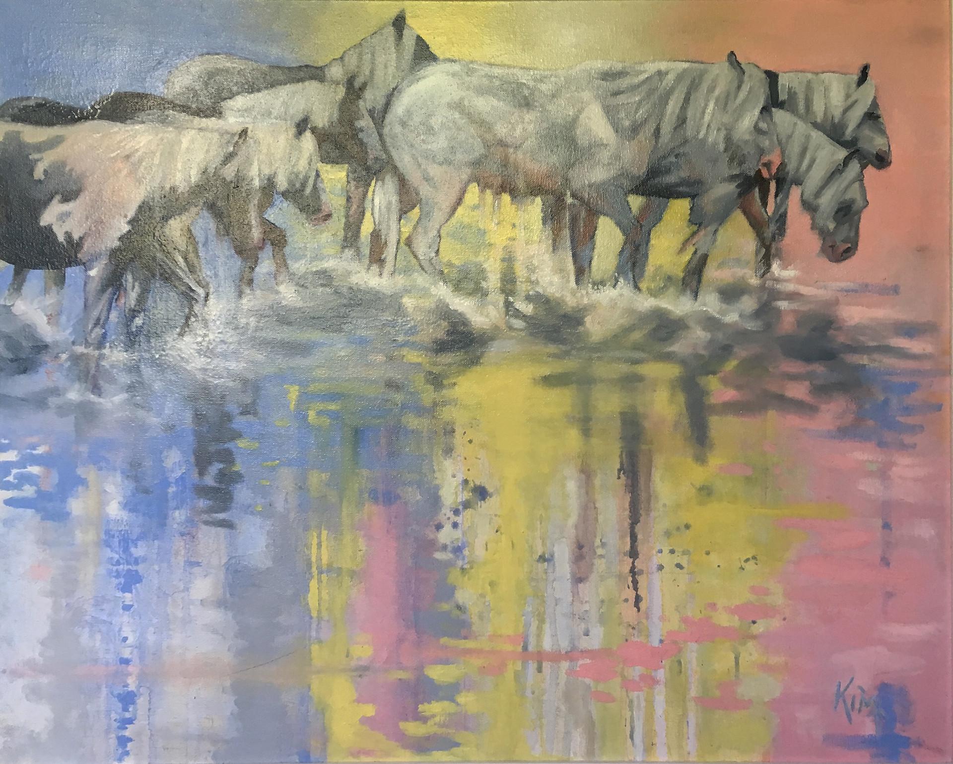 Wild Horses 05.jpg