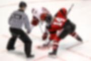 Unsplash photo by Jerry Yu (hockey artic