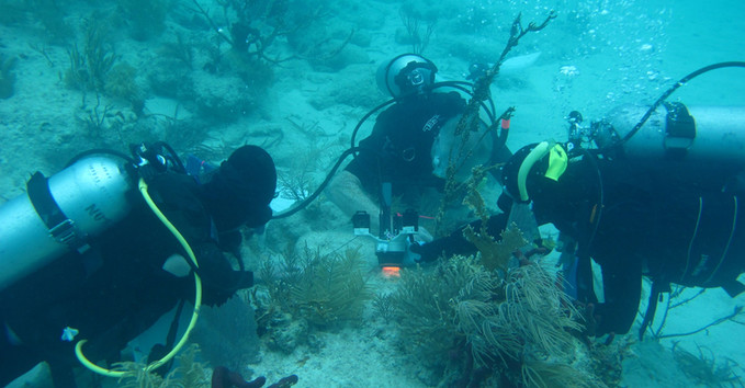 Team deploying CISME on small coral