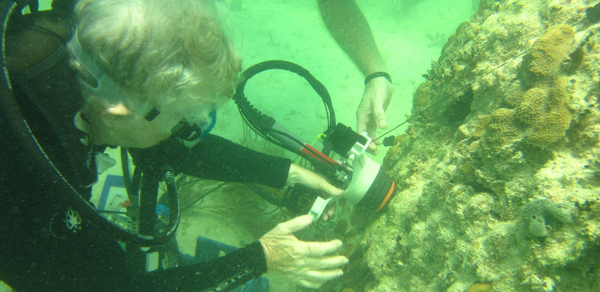 Deploying CISME on a small patch of live coral on a large mostly dead coral. Note incline of deployment
