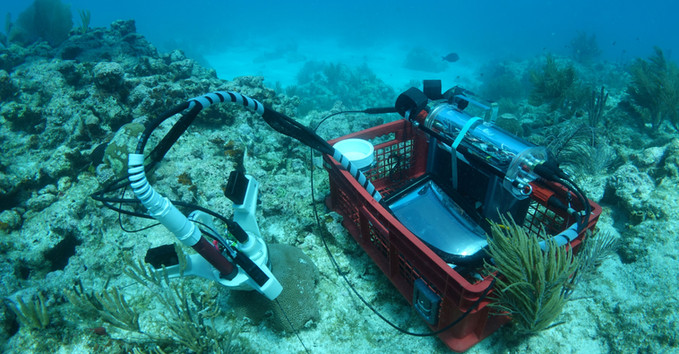 CISME deployed from it's dive crate on a small coral
