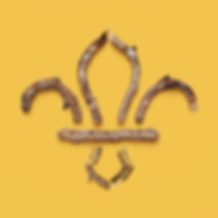 scout-logo-sticks.png