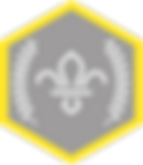 chief-scouts-silver-award-cubs-rgb-png.p