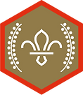 chief-scouts-gold-award-scouts-rgb-png.p
