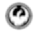 dragon-alliance-logo.png
