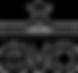 evo.com+logo.png