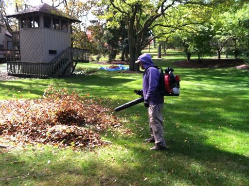 Fall Cleaning Yard.jpg