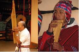「珍しい楽器」